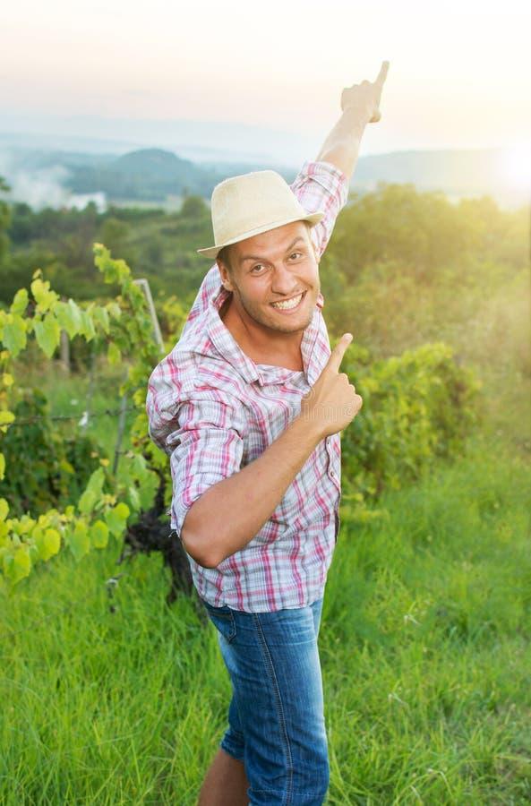 Glücklicher Landwirt, der unter den Traubenreihen sich entspannt lizenzfreie stockbilder