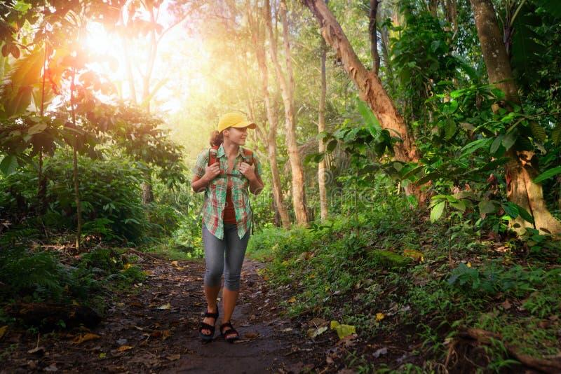 Glücklicher Reisender mit dem Rucksack, der im Regenwald wandert lizenzfreie stockfotos