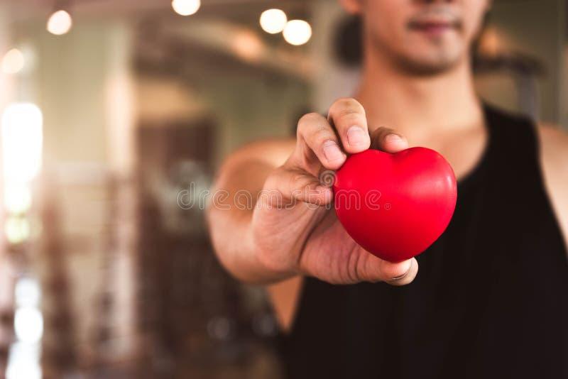 Glücklicher Sportmann, der rotes Herz im Eignungsturnhallenclub hält Medizinischer Herz Herzkrafttraininglebensstil Hübscher Spor stockfotos