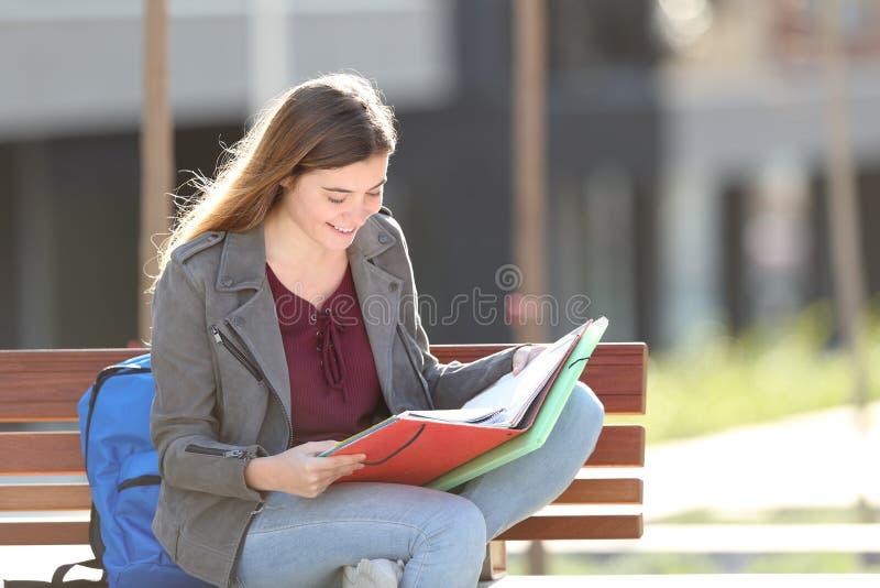 Glücklicher Student, der Leseanmerkungen über eine Bank lernt stockfotos