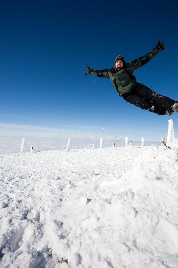 Glücklicher Winterfeiertag lizenzfreie stockfotografie