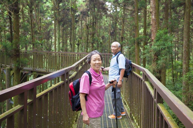 Glückliches älteres Wandern im Park stockbilder