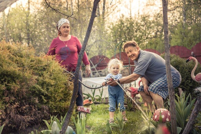 Glückliches Gartenarbeitgrandparenting Konzept des Gärtnergroßeltern-Enkelkindes zusammen stockfoto
