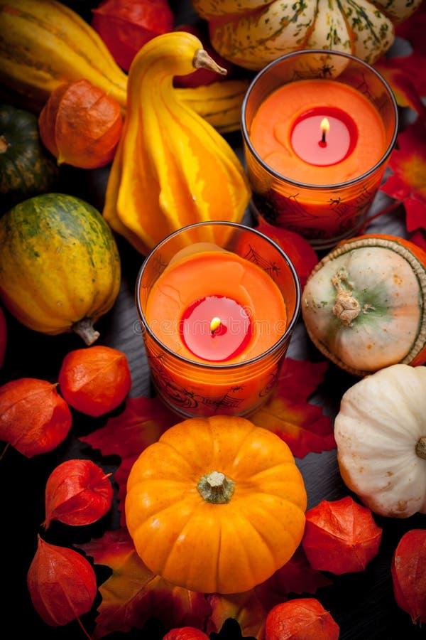 Glückliches Halloween stockfotos