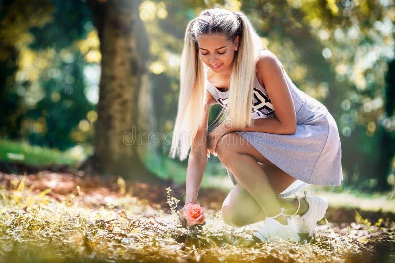 Glückliches junges Mädchen in einer Wiese, die eine Rose aufhebt Wenn grauem Kleid und blonde das Haar gebunden sind stockfotografie