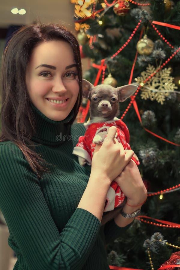 Glückliches junges Mädchen mit dem Hund gekleidet in Santa Claus-Kleidung auf Weihnachtsbaumhintergrund lizenzfreies stockfoto