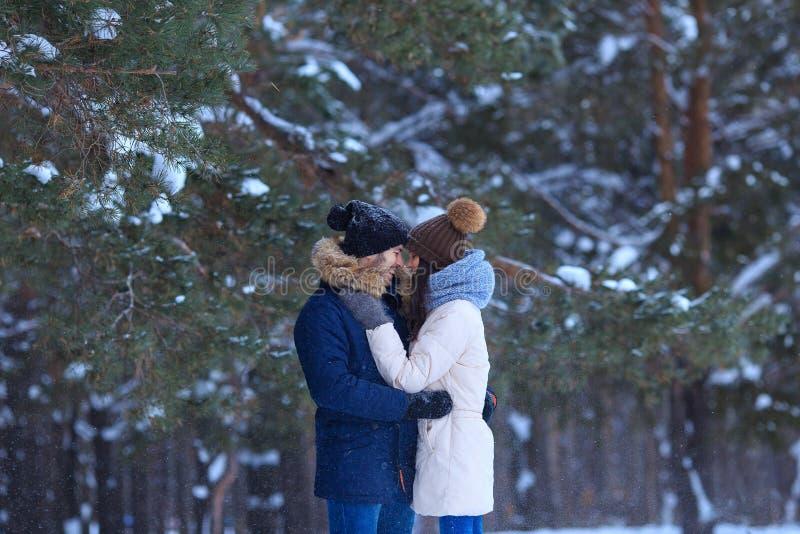 Glückliches junges Paar umarmt im schneebedeckten Holz des Winters stockfotos