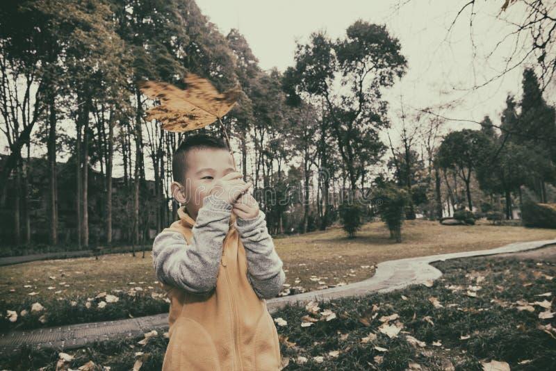 Glückliches Kind am Herbst lizenzfreies stockbild