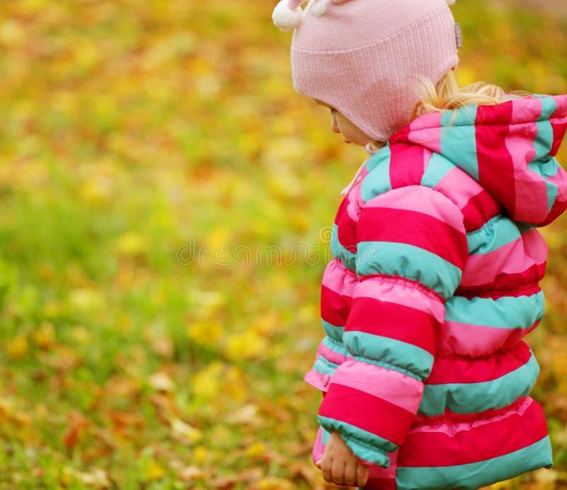 Glückliches Kind im Herbstpark lizenzfreies stockbild
