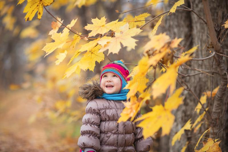 Glückliches kleines Kind, Baby, das draußen Blätter im Herbst auf dem Naturweg lacht und spielt stockbild