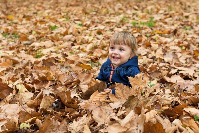 Glückliches kleines Kind, Baby, das im Herbst lacht und spielt stockfotografie