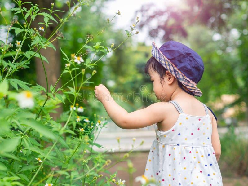 Glückliches kleines nettes Mädchen im Bauernhof Landwirtschaft u. Kinderkonzept stockfotografie