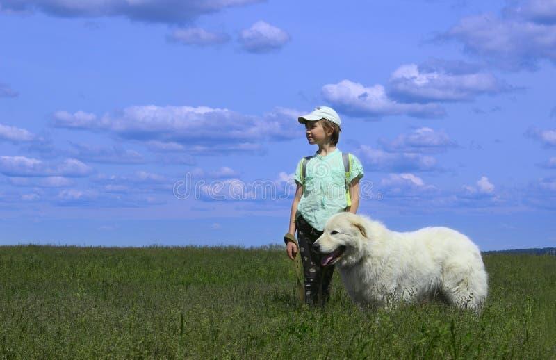 Glückliches Mädchen, das mit ihrem Schoßhund spielt stockfoto