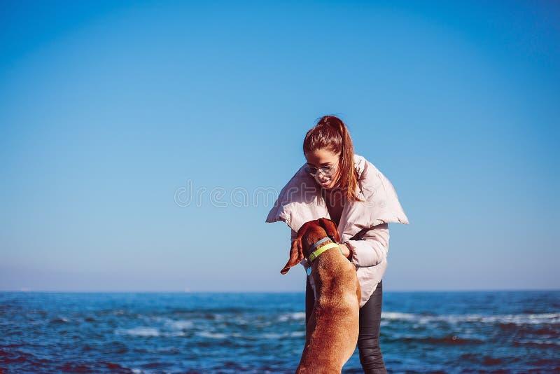 Glückliches Mädchen mit einem Hund in dem Meer lizenzfreie stockfotos