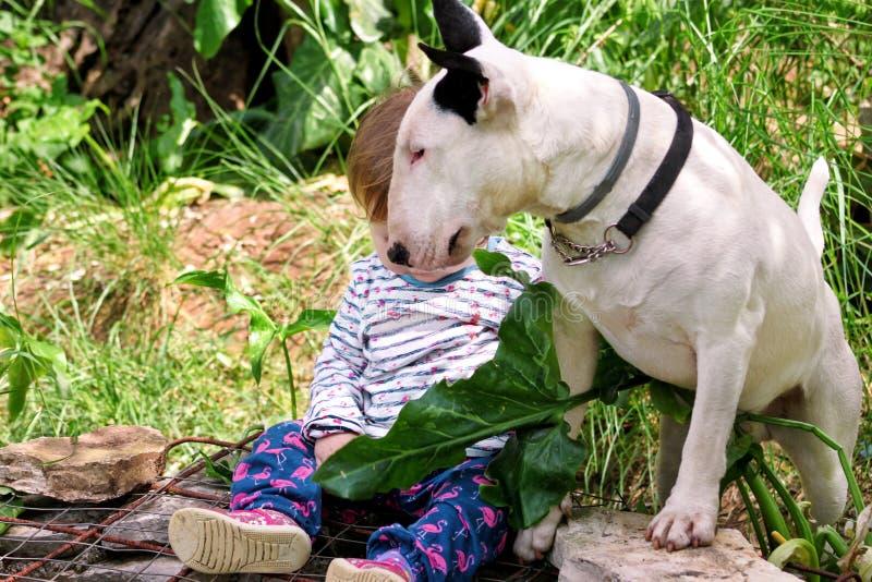 Glückliches nettes weibliches Baby und Hund sitzt im Garten Kind spielt mit weißem Hund des englischen Bullterriers draußen im Pa lizenzfreies stockfoto