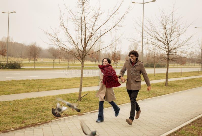 Glückliches Paar, das Tauben laufen lässt und jagt stockfoto