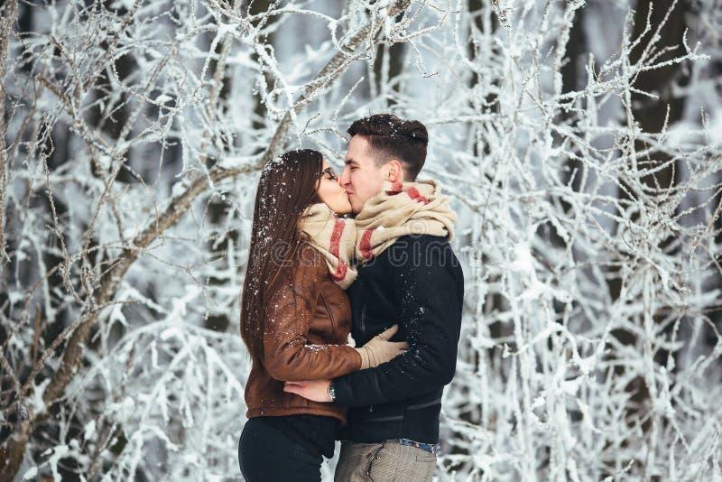 Glückliches Paar im Schneepark stockfoto