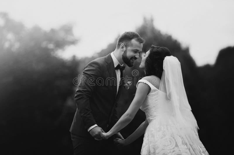 Glückliches, sinnliches Jungvermähltenpaarlächeln und Händchenhalten in stockfoto