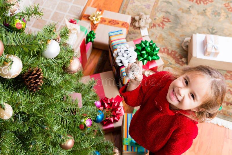 Glückliches stolzes kleines Mädchen, das ihren Hamster vorführt stockfotografie