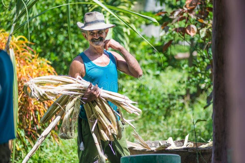 Glückliches und sorgfältiges kubanisches älteres Landwirt- und Bräutigammanngefangennahmenporträt in der alten schlechten Landsch stockbild