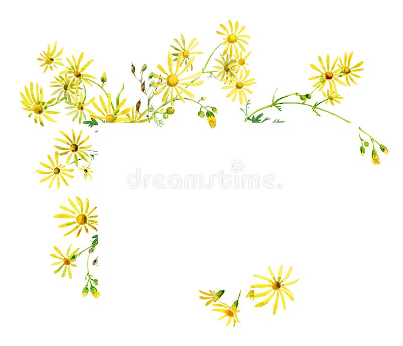 Glückwunsch mit einem Blumenstrauß von gelben Blumen lizenzfreie abbildung