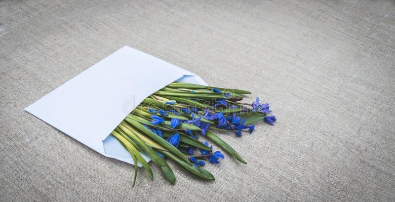 Glückwunschbrief Weißer Umschlag und blaue Wildflowers lizenzfreie stockbilder