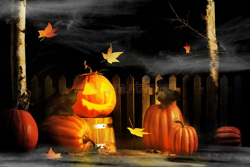 Glühende Halloween-Jack-O-Laterne und zwei Raben lizenzfreie stockfotografie