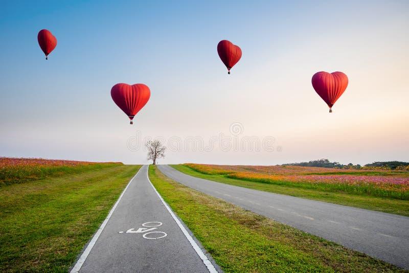 Glühende Luftballone in Form eines Herzens über Kosmosblumenfeld stockfotos