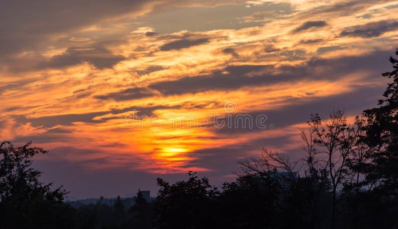 Glühender Sonnenaufgang, der Vordergrund silhouettiert stockbild