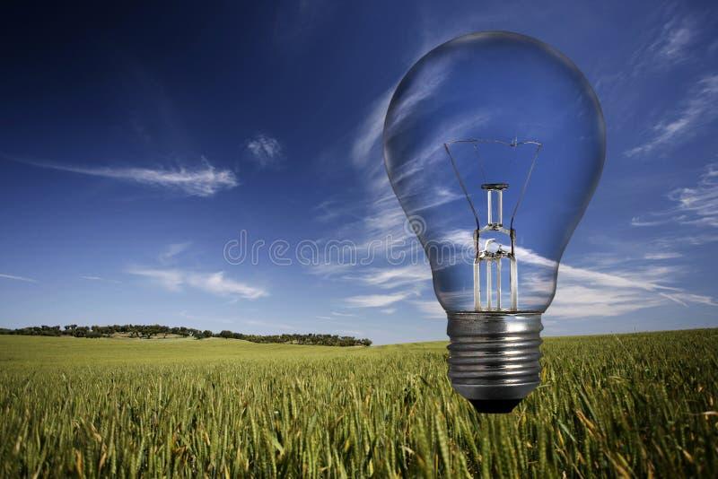 Glühlampe über Frühlingslandschaft stockbild