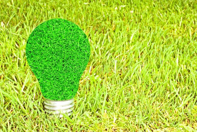 Glühlampe gemacht vom grünen Gras lizenzfreie stockbilder