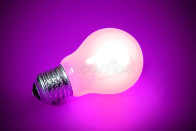 Glühlampe getrennt lizenzfreie stockfotografie