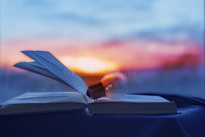 Glühlampe liegt im geöffneten Buch, das Wissenschaftlerlicht lizenzfreie stockfotografie
