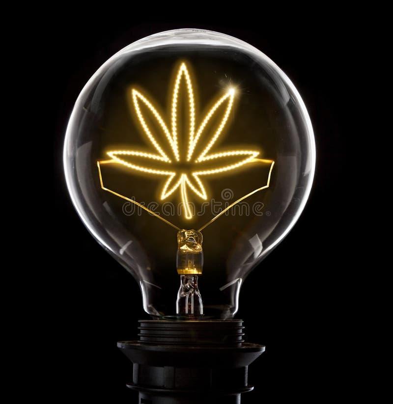 Glühlampe mit einem glühenden Draht in Form eines Unkrautblatt serie stockfotos