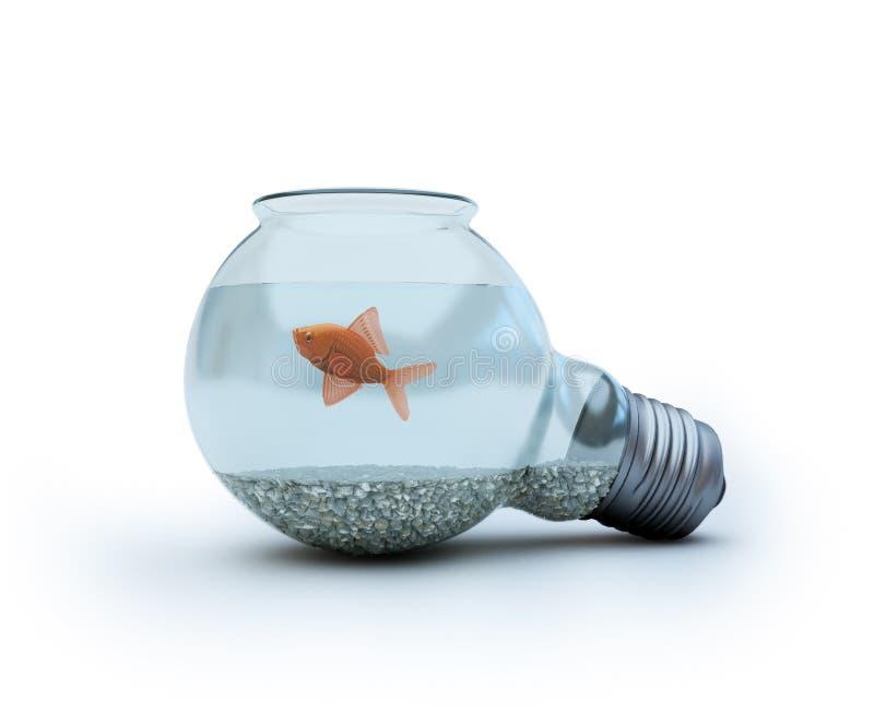 Glühlampe mit einem Goldfish lizenzfreie stockfotografie