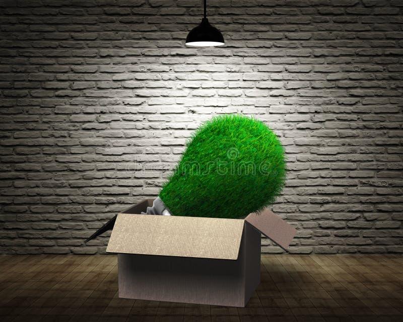 Glühlampe mit grünem Gras, Pappschachtel, grüne Energie ECO conc stockbild