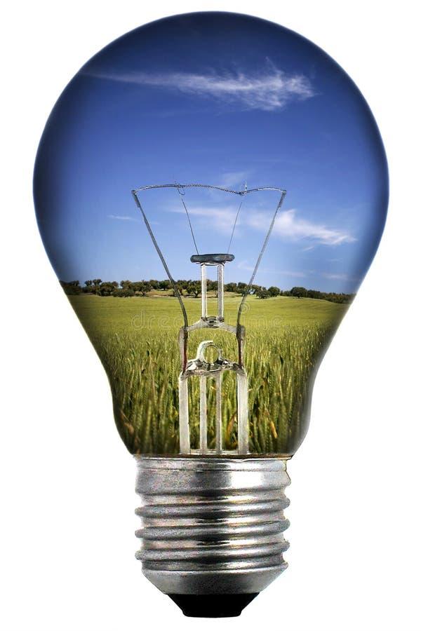 Glühlampe mit Landschaft nach innen lizenzfreies stockfoto