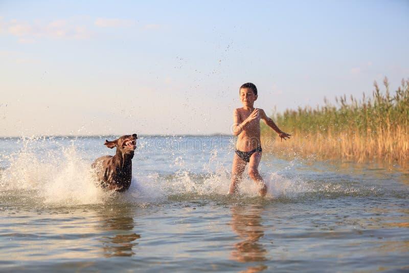 Gl?ckliche kleine Jungenl?ufe, Spiele mit dem jagenden braunen Hund im Wasser Gl?ckliche Kindheit Sch?ner sonniger Sommertag Ort  lizenzfreies stockbild