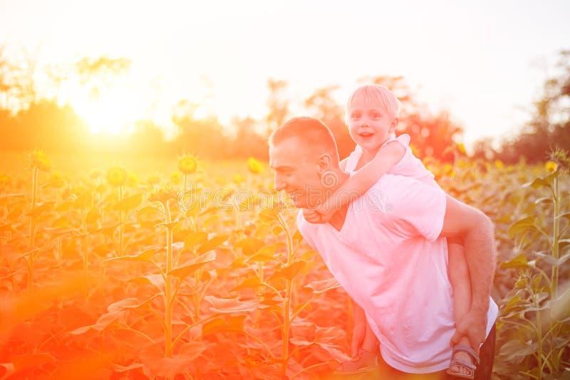 Gl?cklicher Vater mit dem Sohn auf R?ckseite gehend auf ein gr?nes Feld von bl?henden Sonnenblumen bei Sonnenuntergang lizenzfreies stockbild