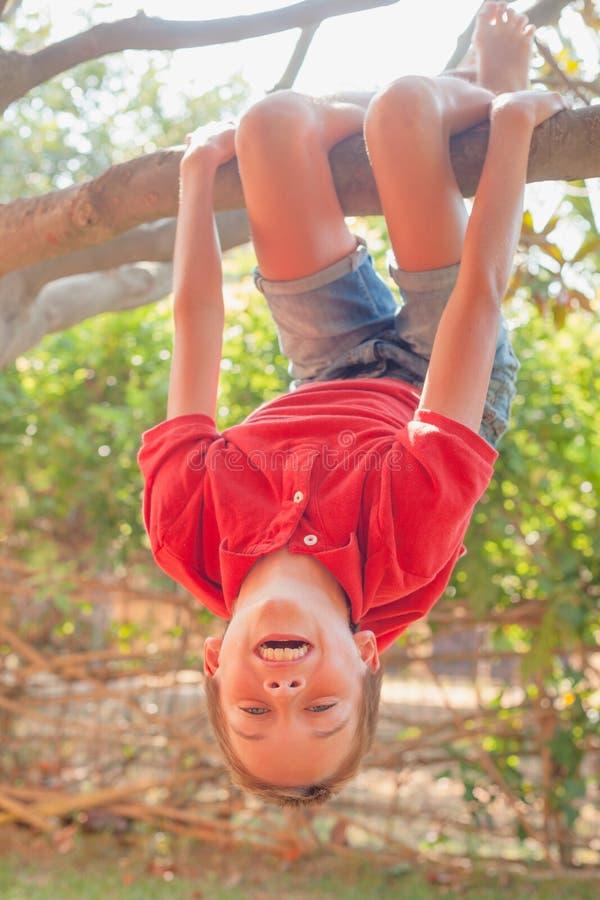 Gl?ckliches M?dchen, das von einem Baum in einem Sommerpark h?ngt stockbilder