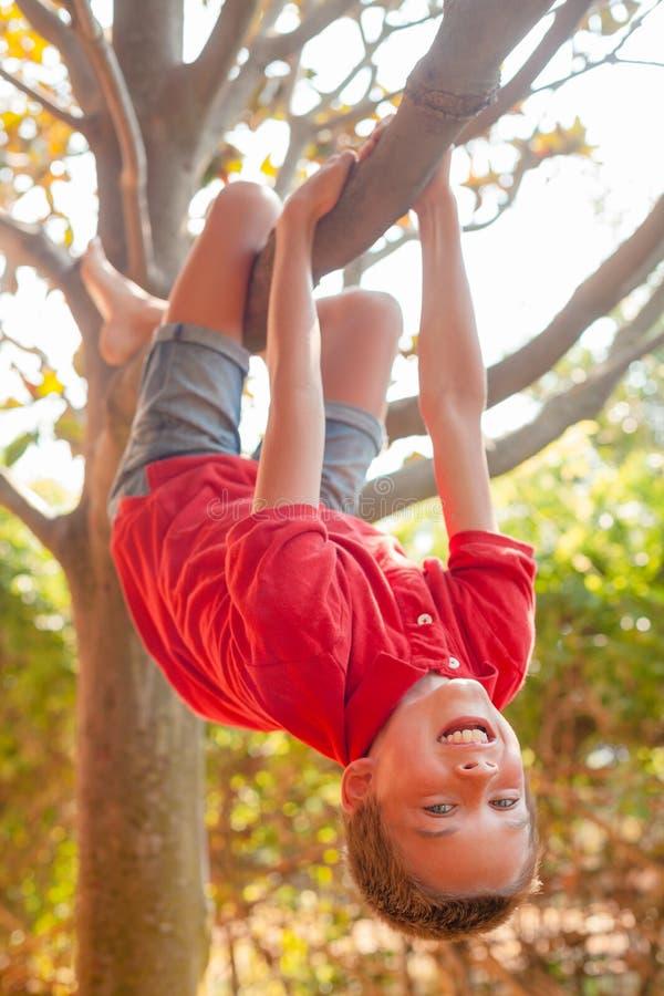 Gl?ckliches M?dchen, das von einem Baum in einem Sommerpark h?ngt lizenzfreies stockfoto