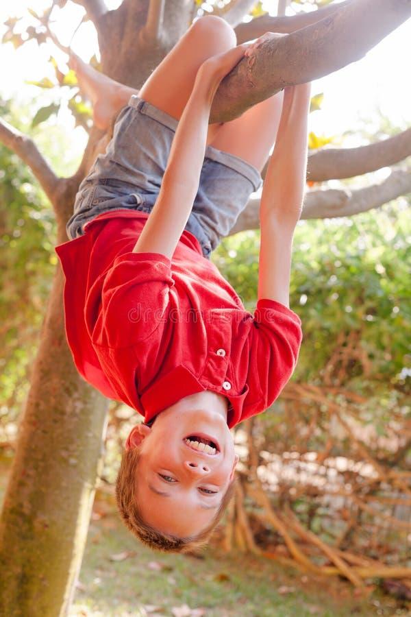 Gl?ckliches M?dchen, das von einem Baum in einem Sommerpark h?ngt lizenzfreie stockfotos