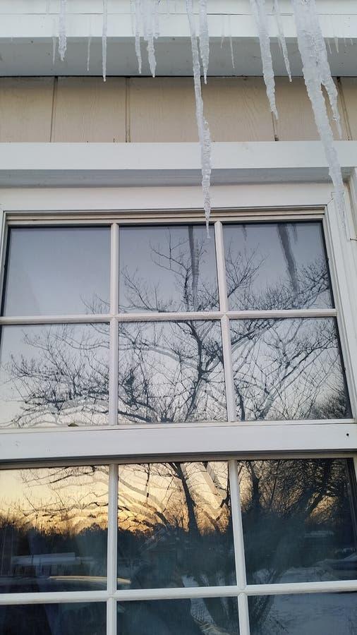 Glaçons au-dessus de réflexion d'arbre image libre de droits