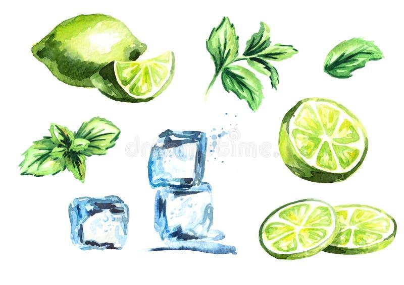 Glaçons, chaux et feuilles en bon état d'isolement sur l'ensemble blanc de fond Illustration tirée par la main d'aquarelle illustration de vecteur