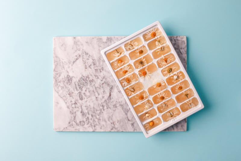 Glaçons de fines herbes, soins de la peau régénérateurs d'été Fleurs congelées fraîches de camomille de marguerite d'herbes du pl photo stock