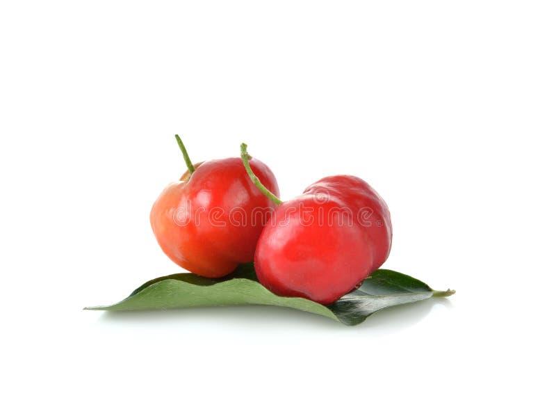 Glabra de malpighie, fruit d'Acerola sur le fond blanc photos libres de droits