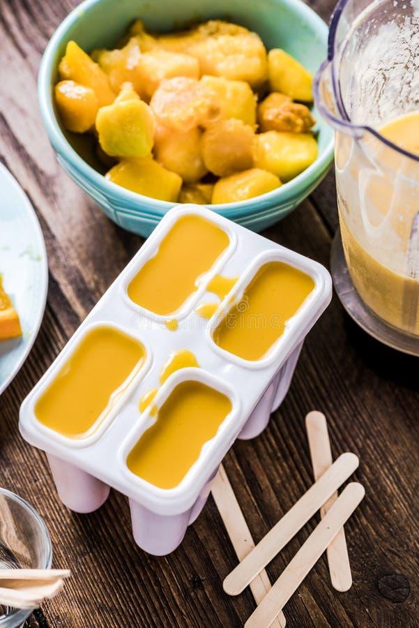 Glace à l'eau faite maison, sucette régénératrice de festin d'été photo stock