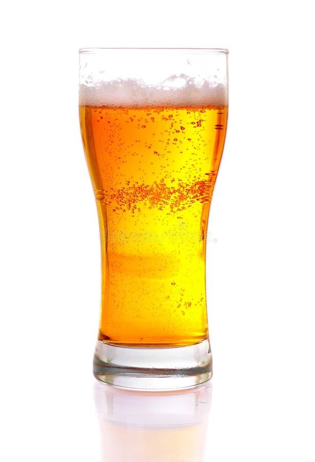 Glace de bière d'isolement photographie stock libre de droits