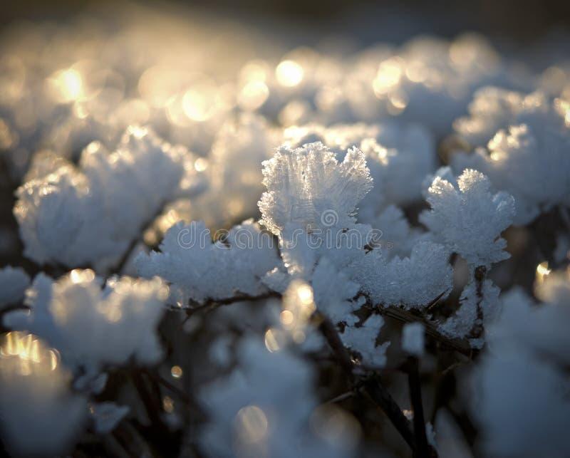 glace de cristaux photo libre de droits