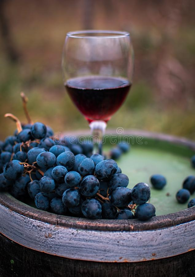 Glace de vin rouge avec des raisins image stock